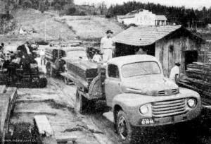 1955 – Madeireira Borini